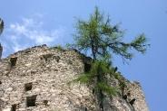 17-Ruine Hauenstein