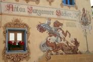 15-Burgauner