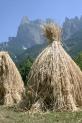 15-Getreide in Sankt Vigil mit Santner