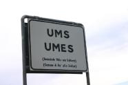 01-Ums