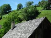 13-Dach