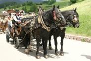 25-Pferdekutsche