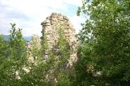 14-Ruine mit Baeumen