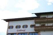 Goldknopf