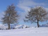 09-Impressioni d'inverno