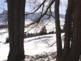 31-Impressioni d'inverno