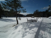 13-Impressioni d'inverno
