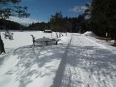 14-Impressioni d'inverno