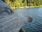 14-Lago di Fiè
