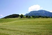 16-Prato